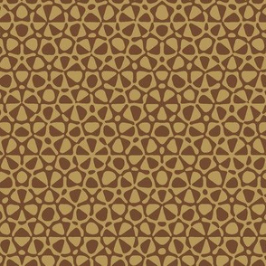 star quasicrystal in summer brown