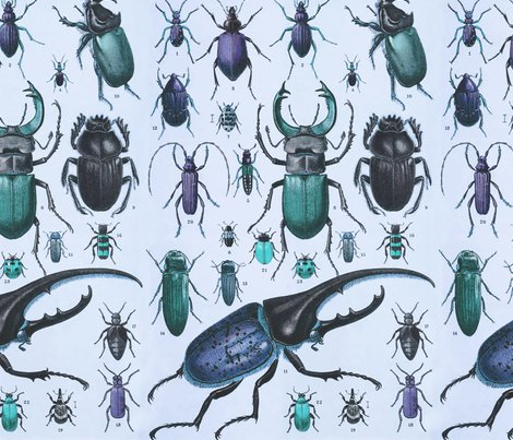 Beetles_taxonomy_tileable_blues_shop_preview