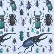 Beetles_taxonomy_tileable_blues_shop_thumb