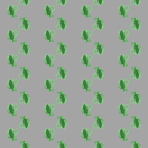 octostripes (green and gray)