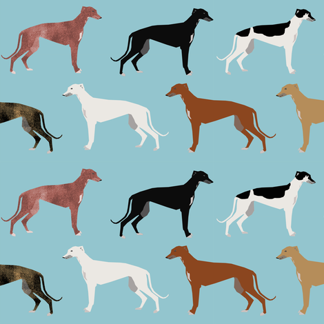 greyhounds fabric cute dog breed dog coats colors fabric cute greyhound fabric  fabric by petfriendly on Spoonflower - custom fabric