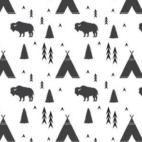Tee Pees and Bison in Black and White