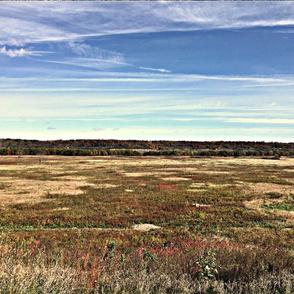 Prairie Landscape - Minneopa State Park Minnesota