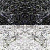 Rblack_or_white_swan_shop_thumb