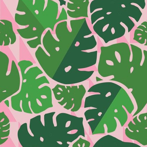 Monstera Bash