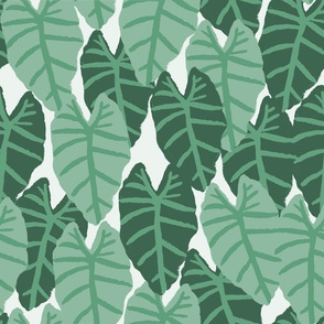 palms tropical alocasia tropical palm print summer palm springs trendy cool vibes wallpaper