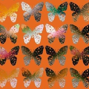 Dark stark orange butterflies on hot orange by Su_G