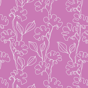 Fresias in Dusty Pink