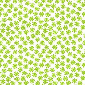 Gerberas Bright Trio - Macro Florals in Lime Green