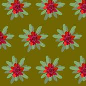 2941 Waratah#1-GreenSap