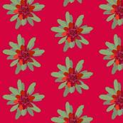 2941 Waratah#1-Red
