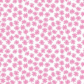 Gerberas Bright Trio - Macro Florals in Pink