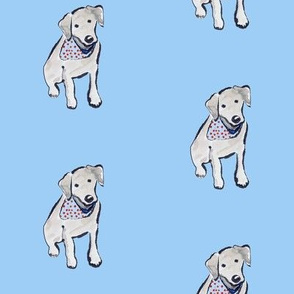 Black Labrador Puppy Cherry Bandana Blue