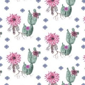 Watercolor Succulents and Flowers