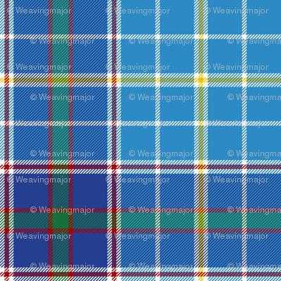 "Texas bluebonnet tartan, 6"" bright"