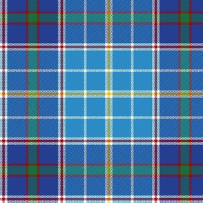 "Texas bluebonnet tartan, 6"" bright"