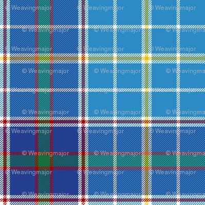 "Texas bluebonnet tartan, 4"" bright"