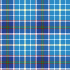 "Texas bluebonnet tartan, 4"" repeat"
