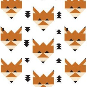 Geometric Fox