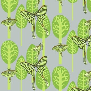 luna moth forest [brights]