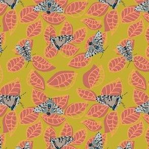 leopard moth in leaves