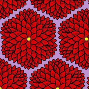 Red chrysanthemums on lavender