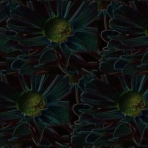 Neon_daisies_edited-1