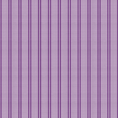 Bicolour Purple on Coarse Wool