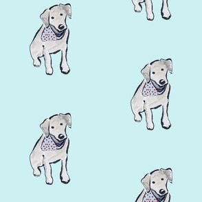Black Labrador Puppy Cherry Bandana Aqua