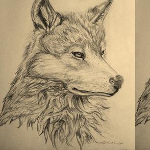 Lone Wolf by Liz H Lovell
