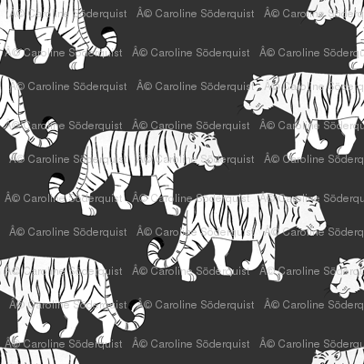 R160907_tigerpattern-bw_preview