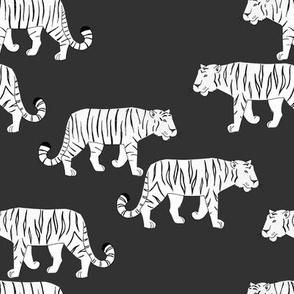 Tigers black/white