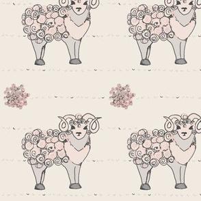 Blushing Merino Sheep