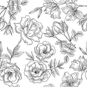 Black and White Vintage Rose Line Drawing