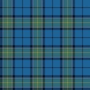 Rhode Island official tartan, bright