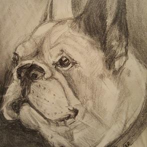 "French Bulldog ""Piper"""