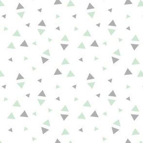Tribal White and Mint Triangle Accent