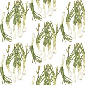 Green Onions half drop repeat