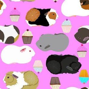 Guinea Pigs and Cupcakes