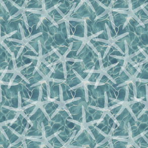 White Starfish on Caribbean Ocean