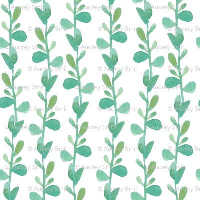 Succulent vine - SMALL