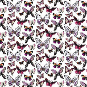 Butterfly Bitty Print