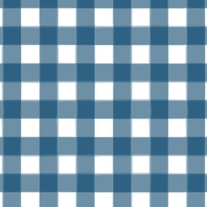 brushed wide gingham denim blue