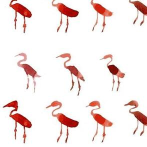 weirdo maroon flamingos