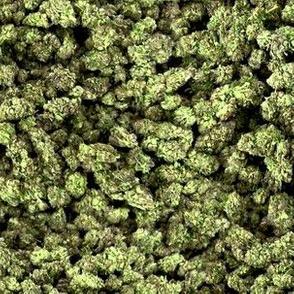 Cannabis: Greens