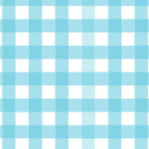brushed wide gingham robin egg blue
