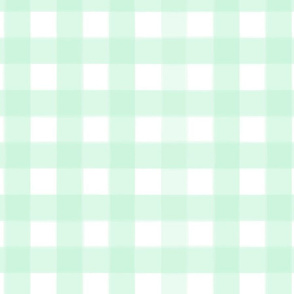 brushed wide gingham mint green