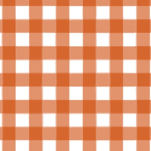 brushed wide gingham squash orange