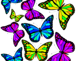 Rheadbandsofhope_avincent_rainbowbutterflies_thumb