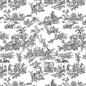 Tiny Toile Black
